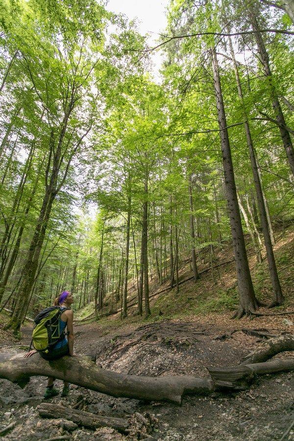 SLOVAKIA – Hike and bike 7